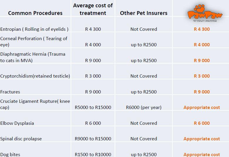 Comparitive-Costs--pet-insurance